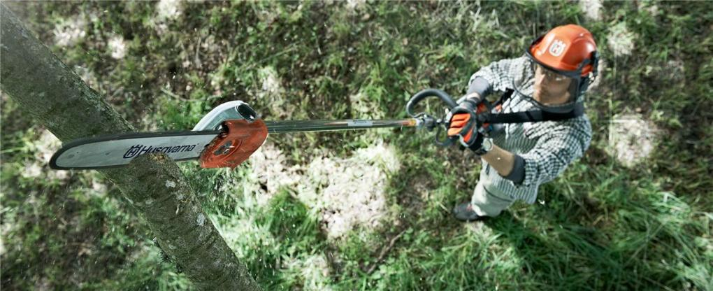 Best Pole Saws